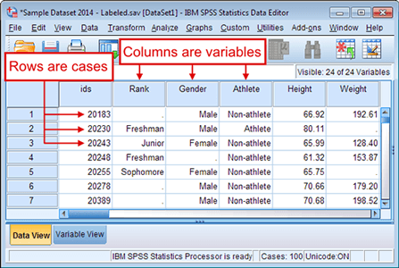 data variables spss